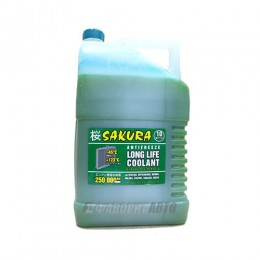 Антифриз ТС  SAKURA  Green   10 кг